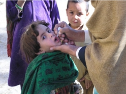 polio_pakistan3